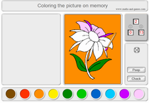 Online coloring on memory